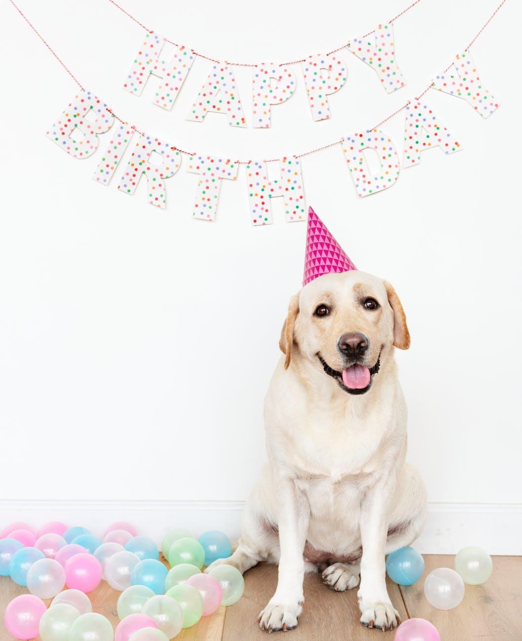 Happy Birthday today , April 5th