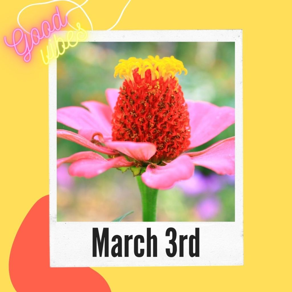 Daily Horoscope for Wednesday, March 3rd, 2021