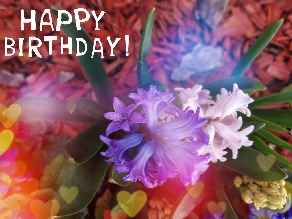 Birthday Horoscope for April 4th